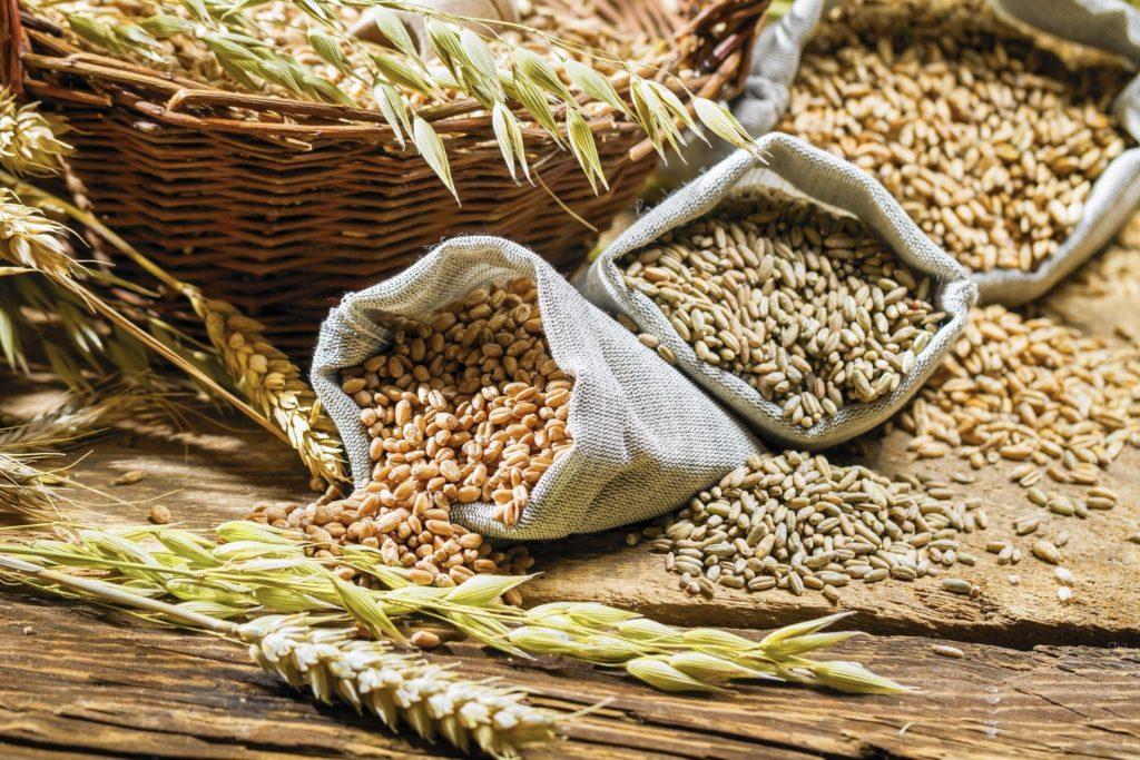 Зерно для канареек
