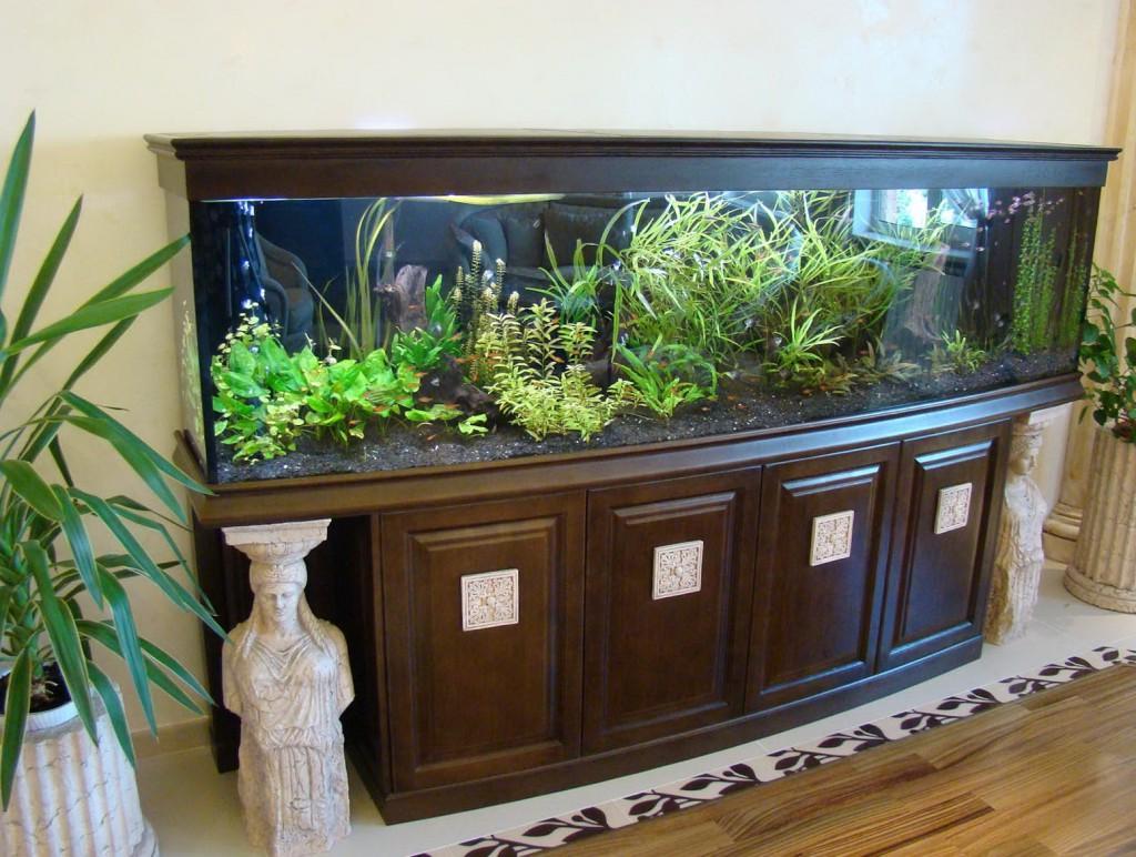Сколько отстаивать воду для аквариума из под крана