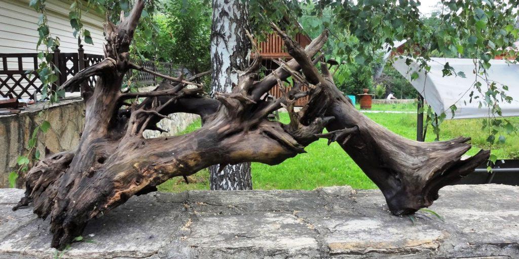 Ветки дерева для аквариум