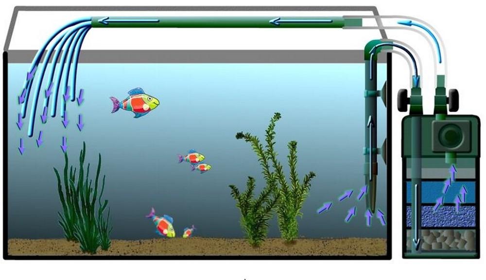 Схема работы компрессора для аквариума