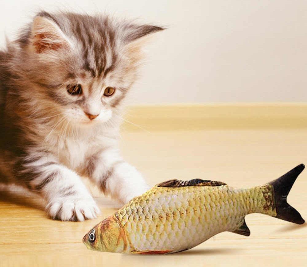 Минимальное присутствие рыбы