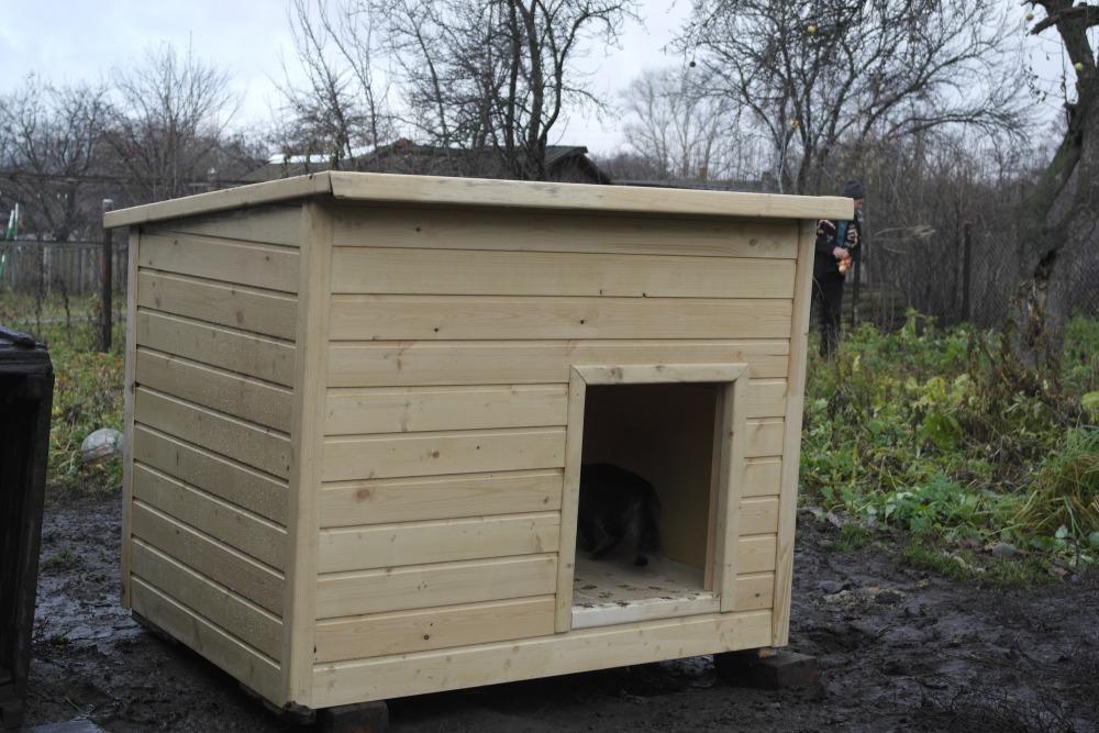 Еще один вариант дома для питомца