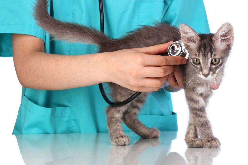 При осложнениях стоит обратиться к врачу
